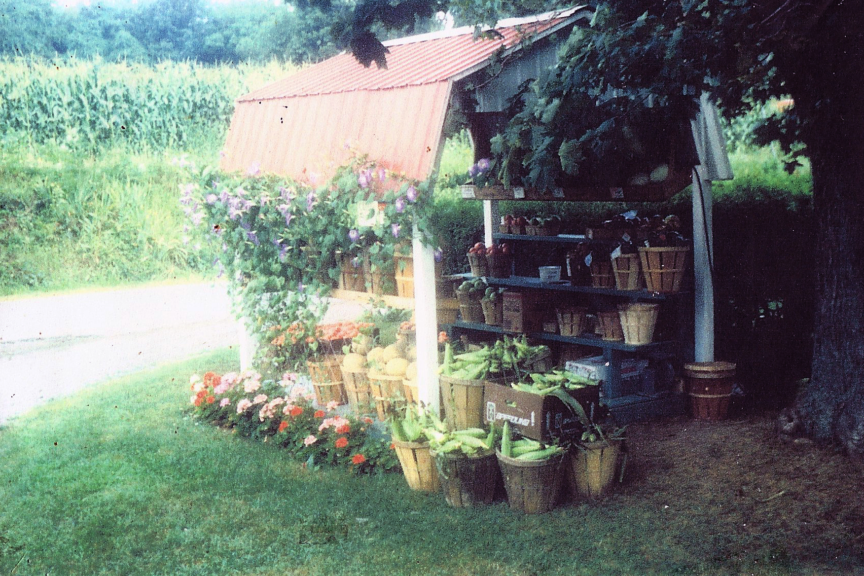 1969-1987 Small Roadside Produce Stand