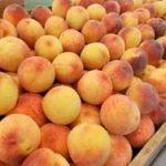 *Local Peaches