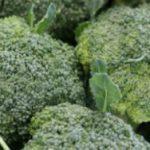 *Local Broccoli
