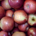 *Local McIntosh Apples