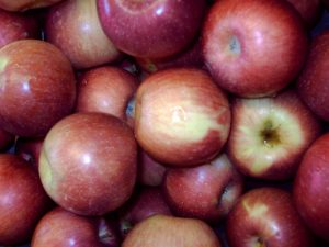 *Local McIntosh Apples