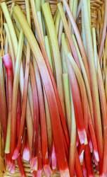 *Local Rhubarb