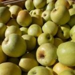 * Local Crispin Apples