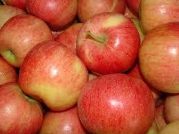 *Local Gala Apples