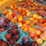 *Local Plums