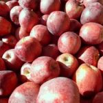*Local Red Delicious