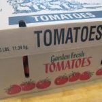 Local Canning Tomatoes